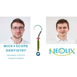 Neolix Day -